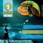 SOCHOG AL DÍA - Edición N° 12