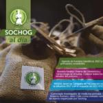 SOCHOG AL DÍA – Edición N° 16
